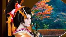 Experience an authentic historical costume in a historical city, Himeji